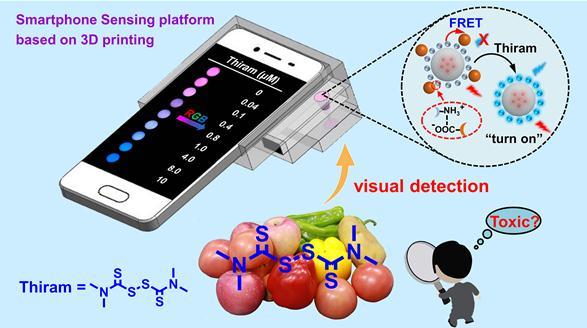 基于荧光试纸的智能手机传感平台构筑及可视化定量分析