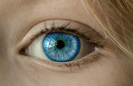 2020年仿生眼技術研究進展:新開發的EC-EYE仿生眼光敏感度效果與人眼媲美