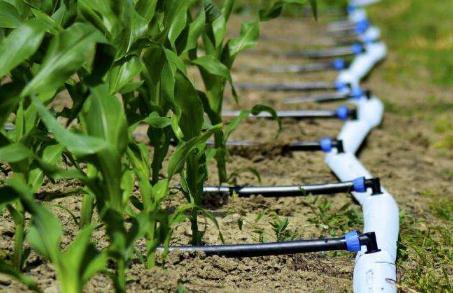 大力提高农业用水效率,我国农业节水措施有哪些