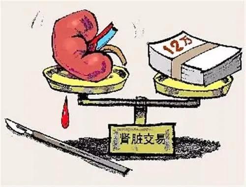 摘取未满18周岁公民的活体器官将追究刑责【什么是组织出卖人体器官罪?】
