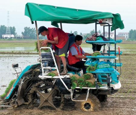 江苏创新农业新模式:多学科合作,建起现代农业生产过程标准体系