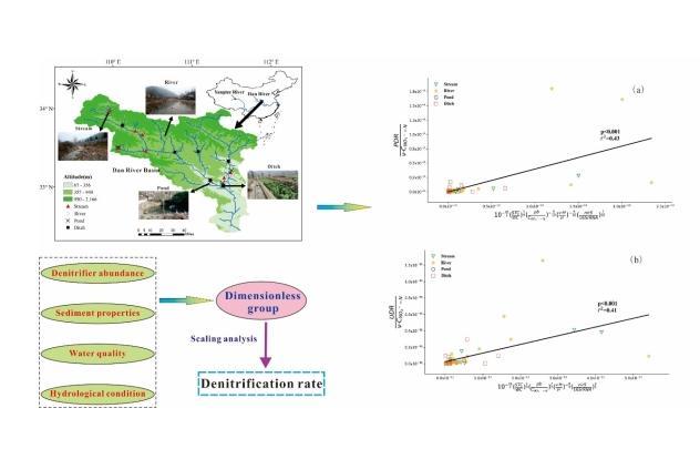 流速和水文脉冲在湿地氮素生物地球化学过程中作用显著