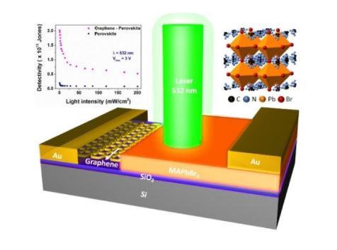高灵敏度钙钛矿单晶-石墨烯复合垂直结构光电探测器制备成功