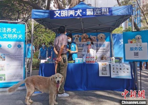 深圳犬只未植入芯片將被視為無證養犬,文明養犬宣傳內容有哪些?