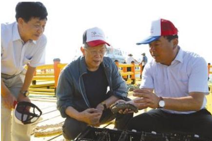 """""""耕海牧渔者""""唐启升院士:潜心研究大海洋生态系,12年瞄准一条鱼"""