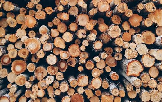 多次检查出有害生物!中国禁止进口澳洲原木和大麦,并注销输华资格