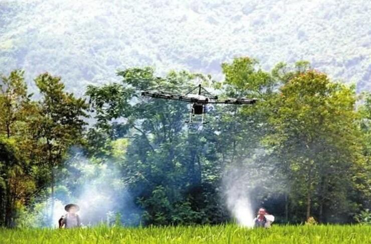 农户种植辣椒使用农药过量,引起药害的有效防治方法