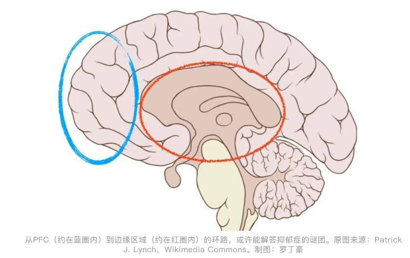 K粉成为抗抑郁新药,对毒品的新认识