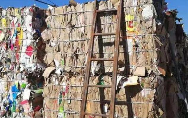 纸企暴增,造纸业成致富首选?废纸回收才是真的暴利!