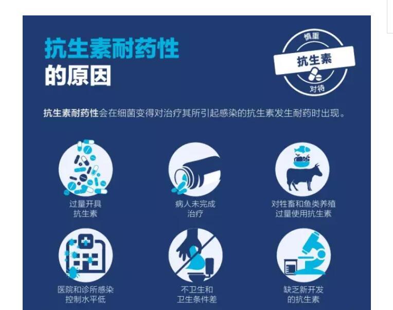 香港大学发现金诺芬有望解决抗生素耐药性问题