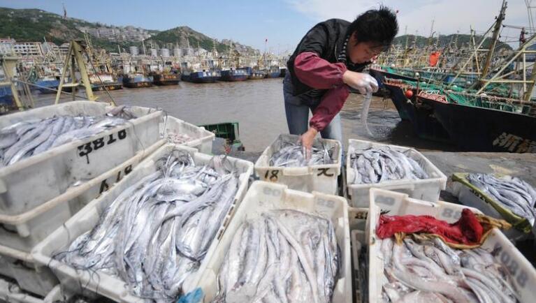 盘点中国各地不同的带鱼做法,南北pk哪种更好吃