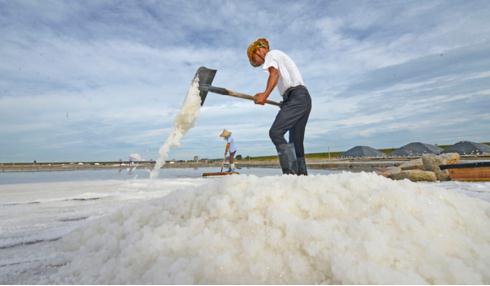 河南鹽改實施三年仍進展緩慢,最大難點是人員安置