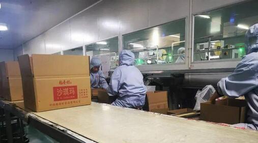 阜城县,是这样的原因,吸引了这些老字号食品品牌的落户!
