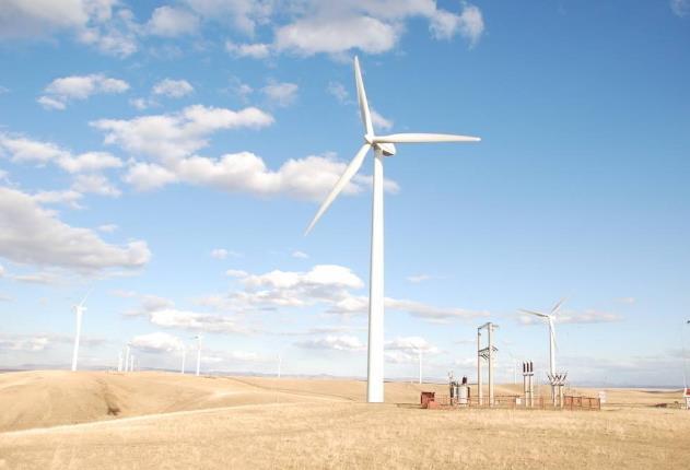 金风科技曹志刚:我们期待风电成为中国的主力能源
