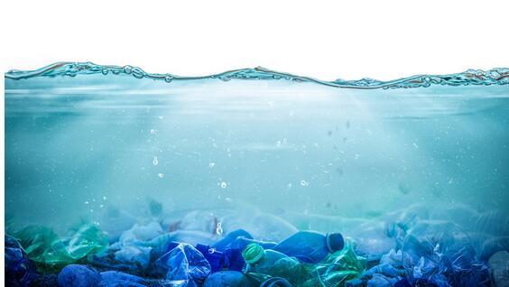 海洋微塑料污染成世界性环境问题,研究证明海鲜中微塑料污染水平最高