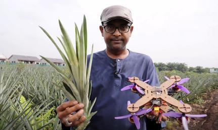 """菠萝叶子""""变身""""为生物复合材料,用于制造无人机部件"""