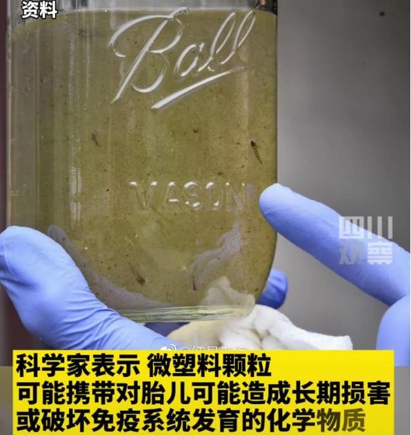 女性胎盘中发现塑料颗粒?微塑料从何而来