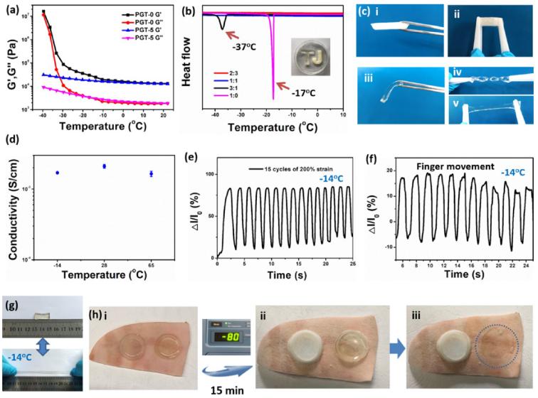 同济大学研制出抗冻抗干有机水凝胶,安徽医科大学研制出新型可穿戴水凝胶传感器