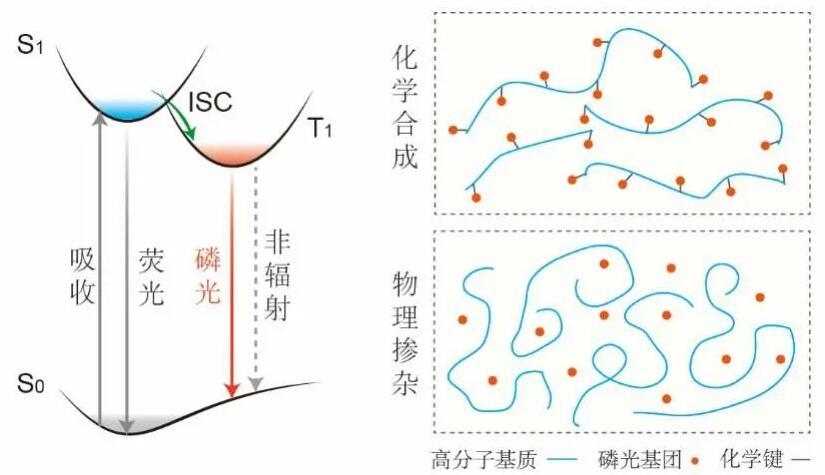 高分子长余辉发光材料的设计策略及结论与展望