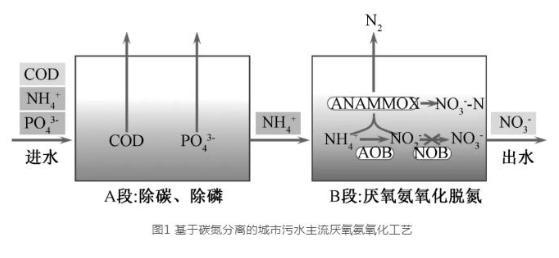 主流城市污水部分厌氧氨氧化技术的研究与工程化应用