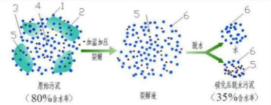 高温热水解对污泥卫生学指标的影响,山西省晋中市200吨/日污泥连续热水解项目技术分析