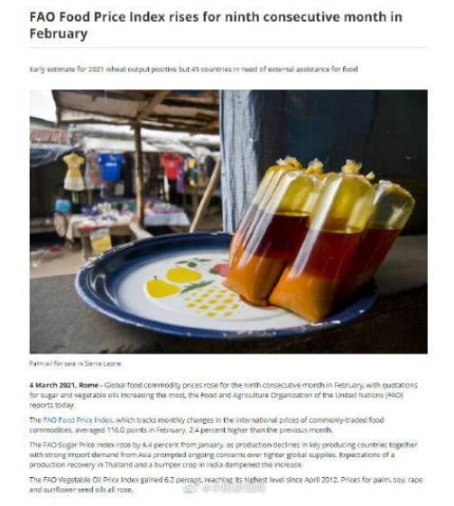 全球食品价格连续上涨9个月,糖和植物油上涨最多