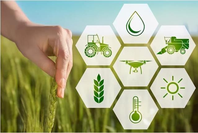 以智能传感器入局智慧农业,分析智慧农业系统在蔬菜育苗中的应用