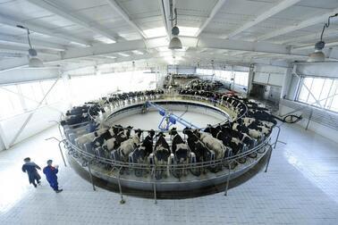 2021年中国乳业发展趋势 ,低温鲜奶成为主流,奶粉市场呈现多元化趋势