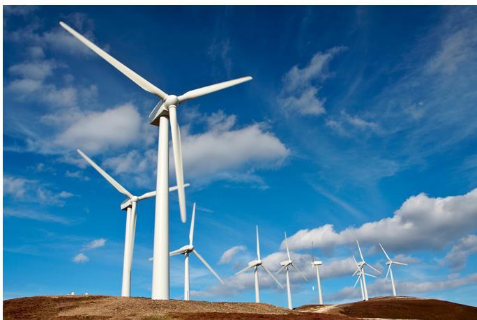 """互联网科技公司该怎么实现""""碳中和""""?"""