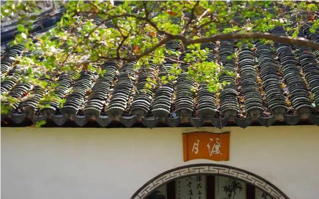 20天后的五一小长假去哪玩?上海这些园林推荐给你!