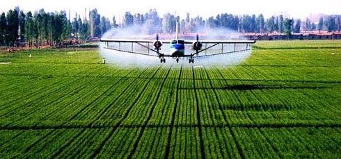 重庆潼南加快现代农业发展,夯实现代农业基础,全力打好开局主动战