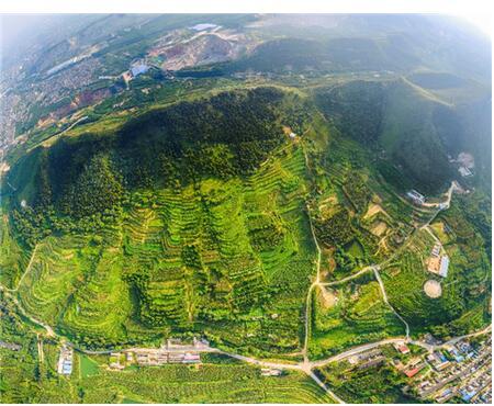 河北唐山古冶区矿区生态修复新模式探索之路