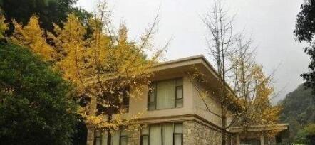 浅析庭院种树宜忌及不宜栽种的植物及竹子对住宅的影响