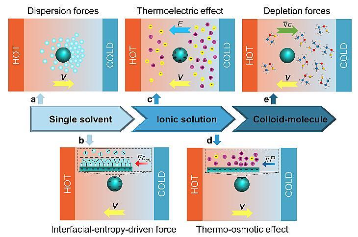 光热泳操控技术的机制、发展和在胶体科学和生命科学等领域的应用