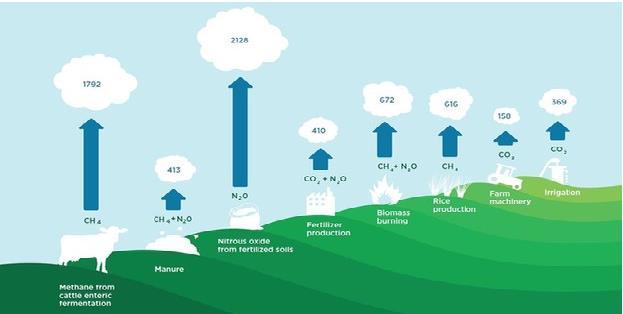 将碳达峰碳中和纳入生态文明建设整体布局,八方面推进碳达峰碳中和工作