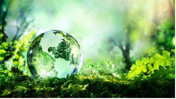 美妆产业的绿色新风,专注绿色成分研发,捍卫持续事业发展