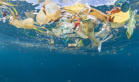 海洋石油污染到底有多严重?海洋石油污染该怎么治理?