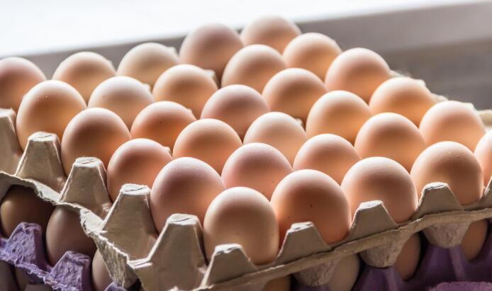4月上旬以来蛋价开始持续走高,未来蛋价仍会继续攀升