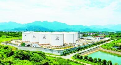 """""""十三五""""我国石油消费量年均增长5.4%,预计""""十四五""""将达峰"""