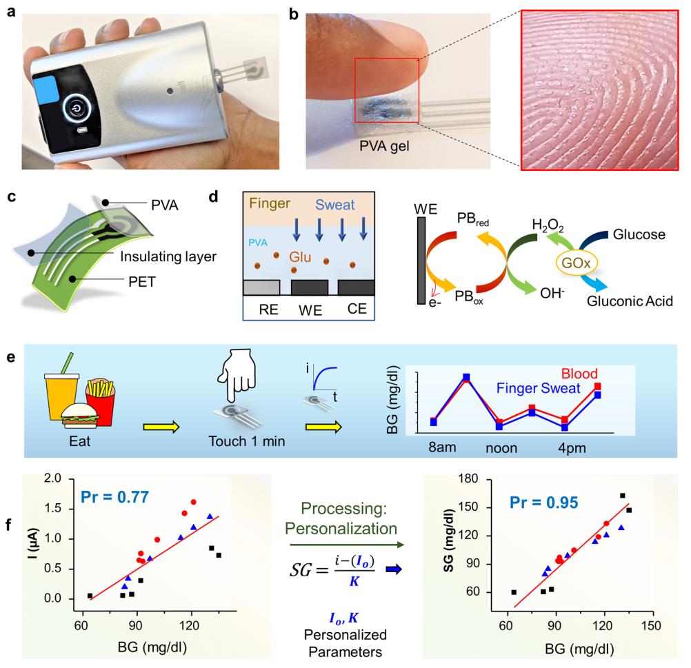 新型无痛葡萄糖检测方法:基于触摸式的指尖汗液电化学传感器