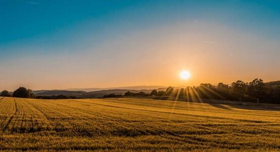 数字农业为什么要用5G?解析5G技术在农业领域的应用