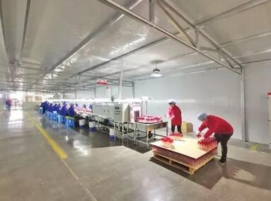 遵义欲打造百亿产值白酒包材产业,引进百家包装企业