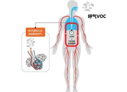 通过呼气可同时进行多种癌症检测,谁将引领呼气检测蓝海市场