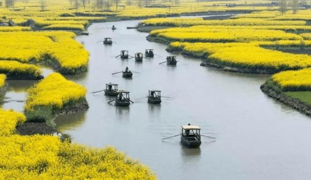 一文带你了解2021国家重点扶持农业项目(汇总篇)