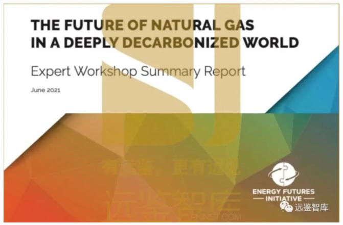 天然气可在低碳世界中发挥作用,但排放政策至关重要