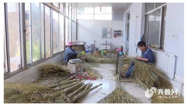 山东嘉祥前杜村:中国扫帚第一村,年产600万把,产值近亿元!