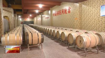 東方葡萄酒看寧夏,寧夏賀蘭山東麓葡萄酒'當驚世界殊'!