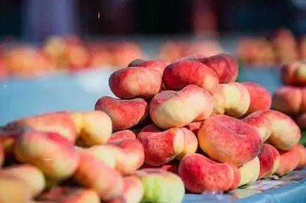 平谷大桃几月成熟,平谷大桃哪个品种最好吃,多少钱一斤?