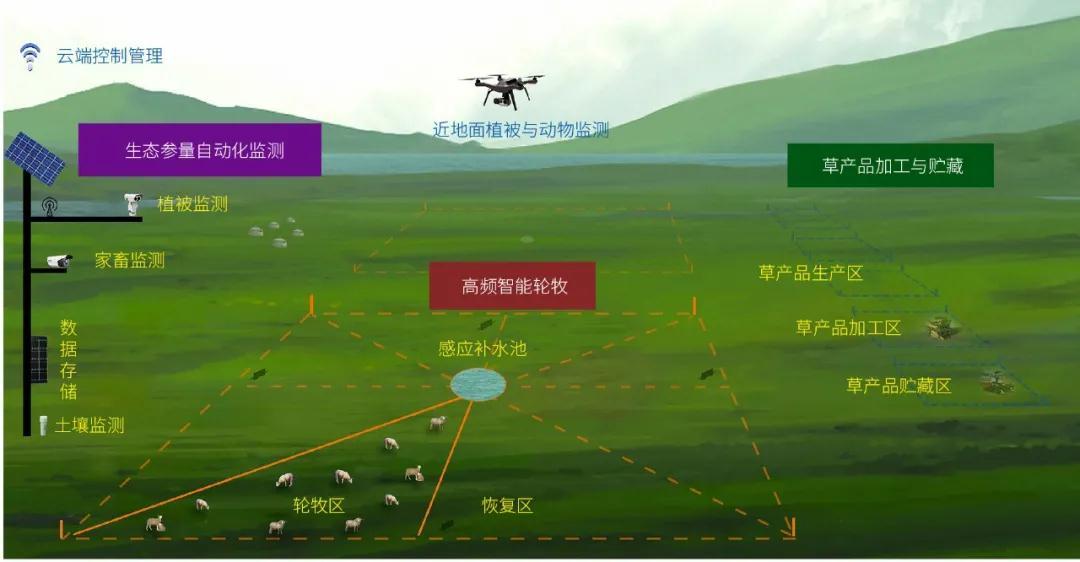 我国草原类型分布与特点、草原的退化现状及恢复方法