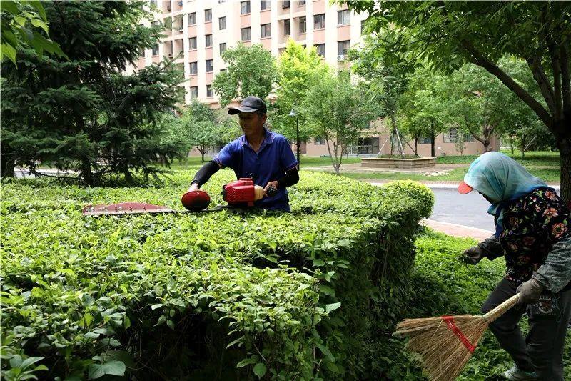 兴隆林业局:发挥自身优势壮大园林绿化产业,开辟林区转型发展新通道